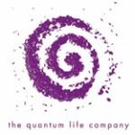 logo quantum 150x150 Expositores 2008